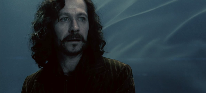 Why Did Sirius Black Choose A Black Dog As His Animagus Form?