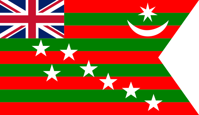 The Flag Used During Home Rule Movement in Year 1917